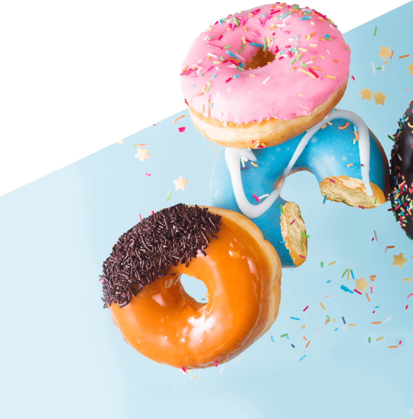 goedit choice of website templates donut image